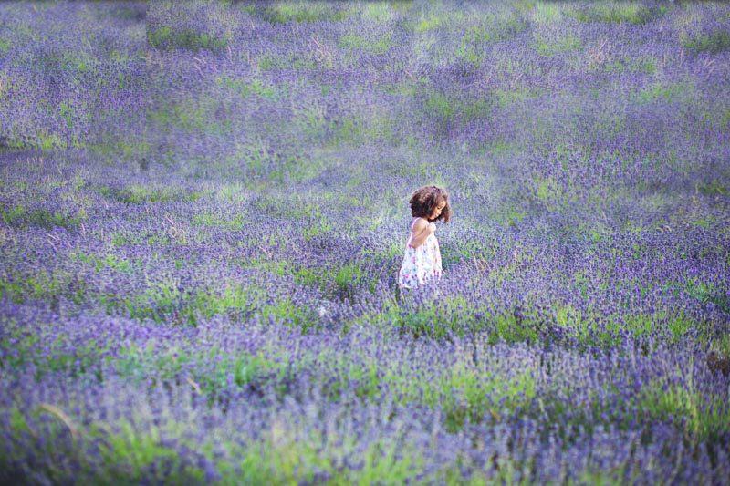 childrens-photography-surrey-banstead-lavender